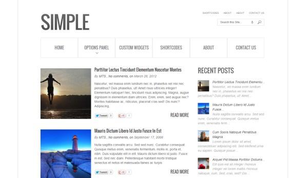 40 Beautiful and Minimal WordPress Themes   Website Design ...